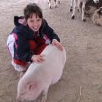 2009-N-Farm-10-2009-(04a)