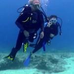 Dive-01