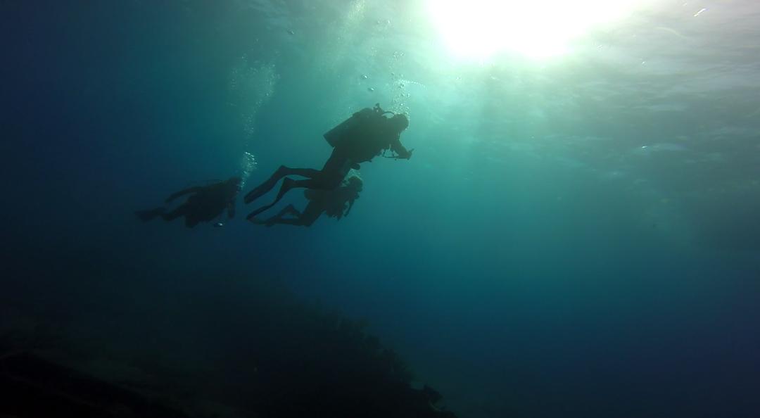 FL-12-23-Dive-A-N-01