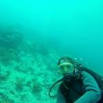 FL-Dive-N-02