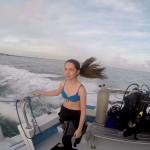 FL-Dive-N-09