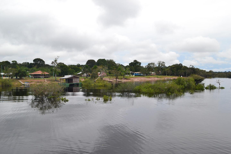AMAZONIA-WEB-001c