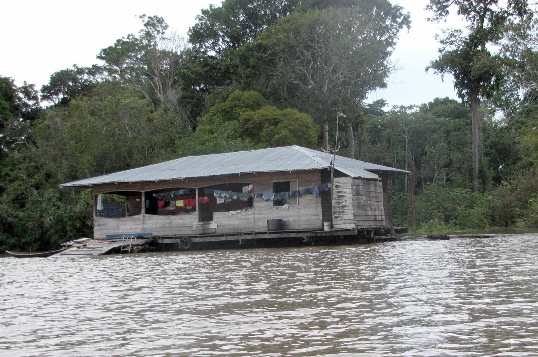 AMAZONIA-WEB-001e