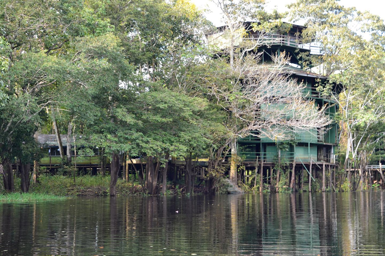 AMAZONIA-WEB-001g