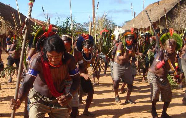 AMAZONIA-WEB-04
