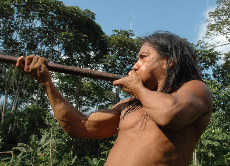 AMAZONIA-WEB-05
