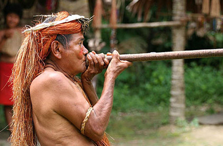 AMAZONIA-WEB-06