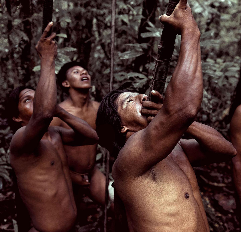 AMAZONIA-WEB-07