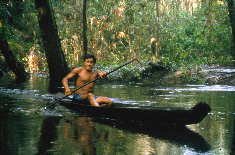 AMAZONIA-WEB-08