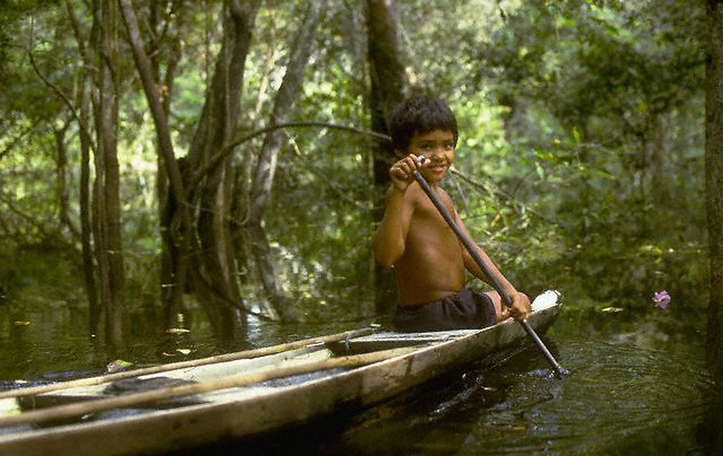 Brazilian Boy Paddling Dugout Canoe on Amazon River