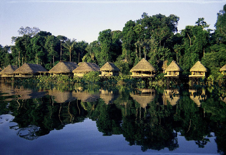 AMAZONIA-WEB-11