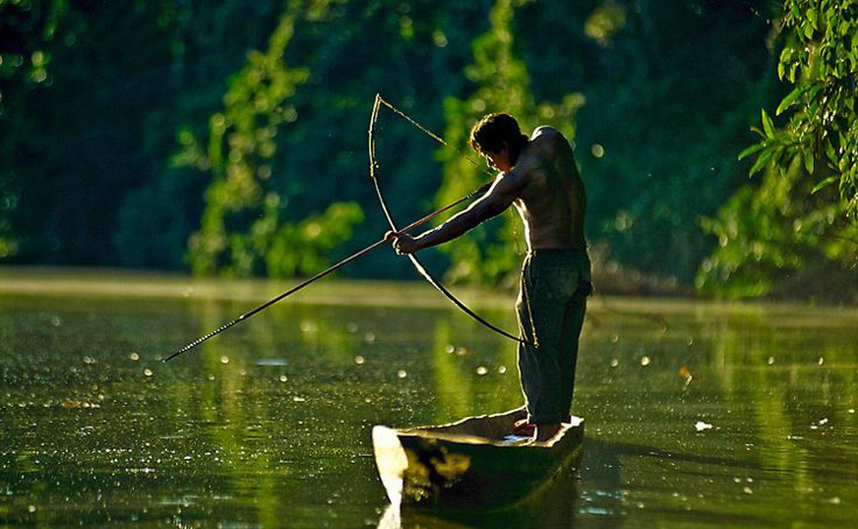 AMAZONIA-WEB-12