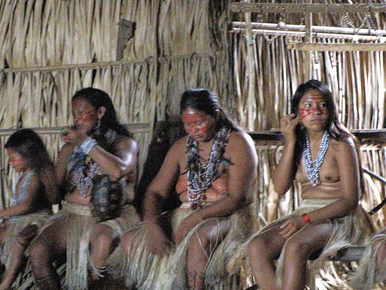 AMAZONIA-WEB-19bb