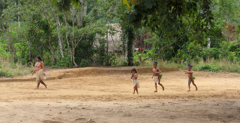 AMAZONIA-WEB-19c