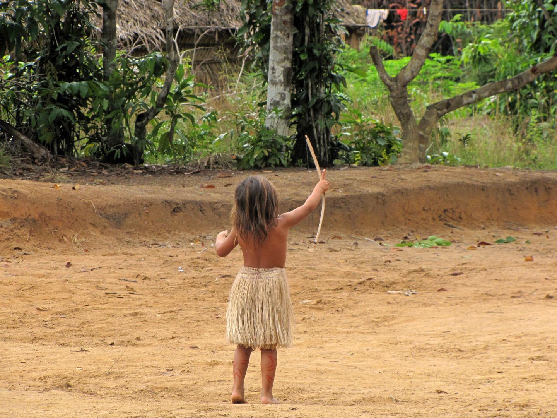 AMAZONIA-WEB-19d