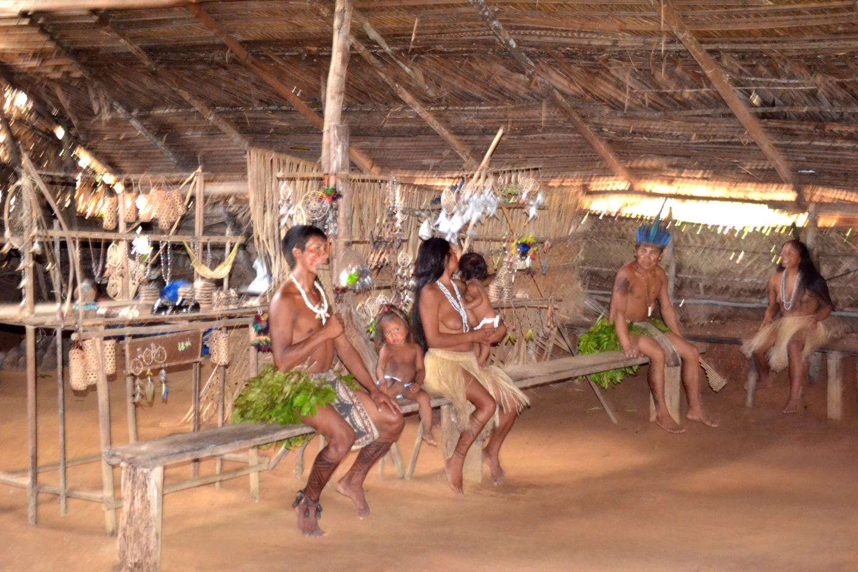 AMAZONIA-WEB-19j