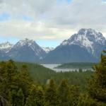 ALEX-Yellowstone-01b