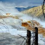 ALEX-Yellowstone-06c