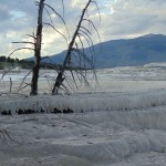 ALEX-Yellowstone-06d