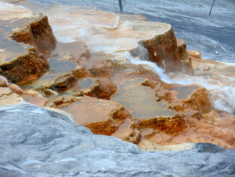 ALEX-Yellowstone-06e
