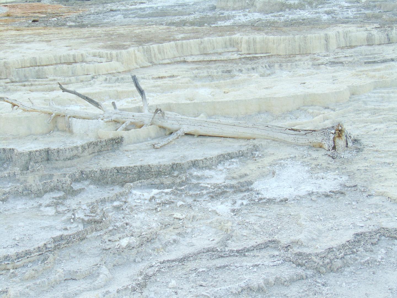 ALEX-Yellowstone-06h