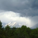 ALEX-Yellowstone-07d
