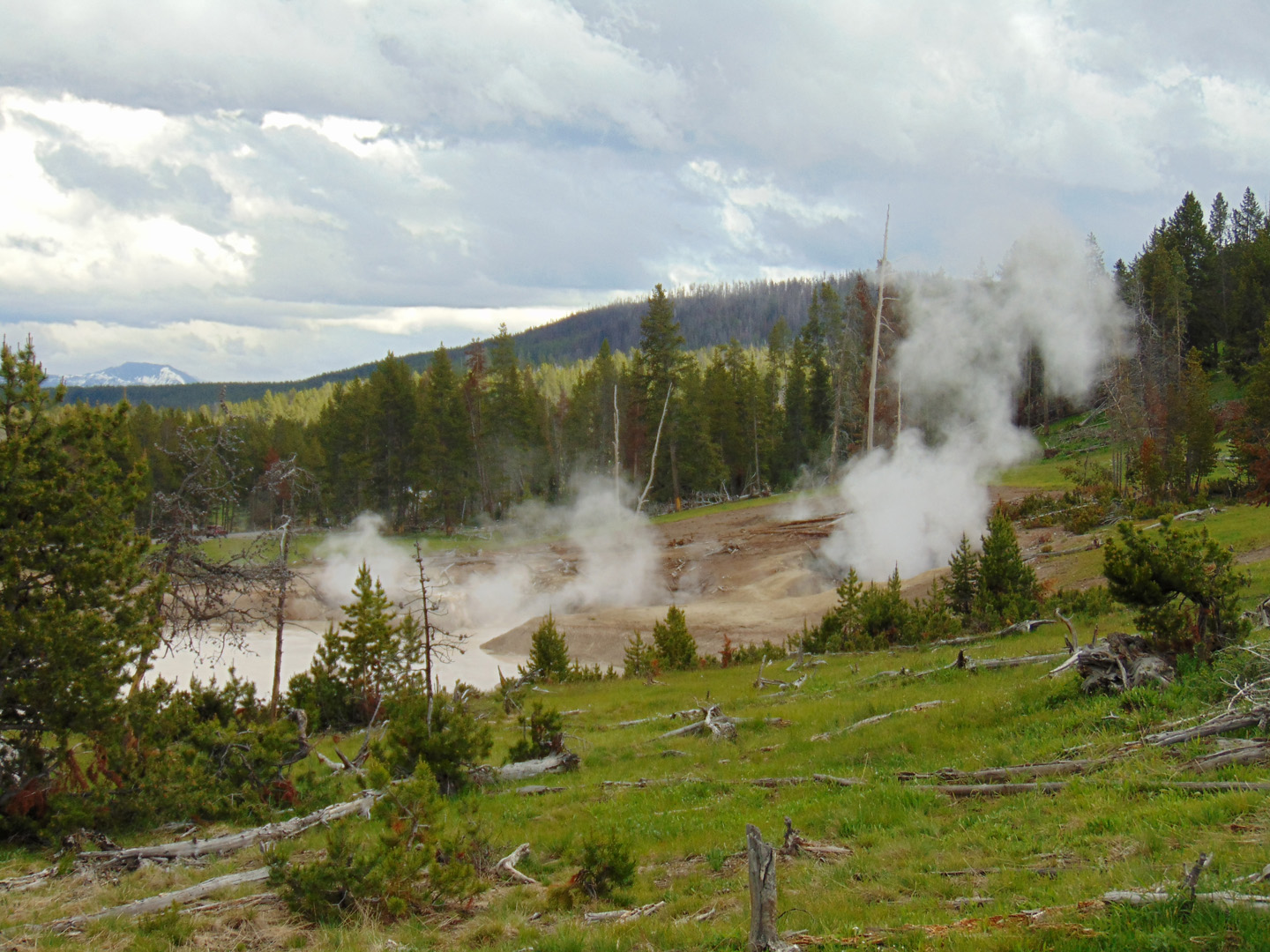 ALEX-Yellowstone-08a