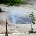 ALEX-Yellowstone-08e