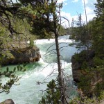 ALEX-Yellowstone-09b