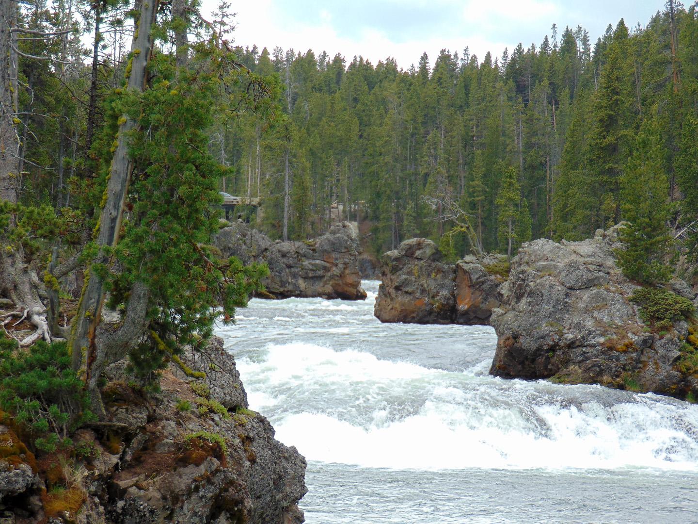 ALEX-Yellowstone-09d