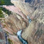 ALEX-Yellowstone-10d