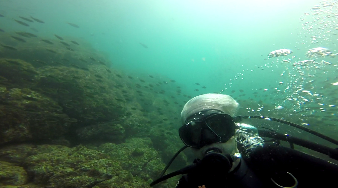 D-02-Diving-08